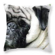 Mug Zee Throw Pillow