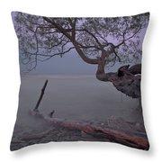 Mystic Lake Throw Pillow
