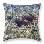 Narraganset Bay 3 Throw Pillow