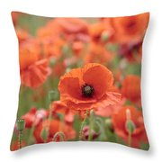 Poppies H Throw Pillow