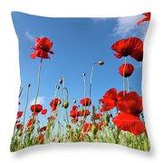 Poppies Season Throw Pillow