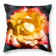 Red Tipped Yellow Rose Throw Pillow