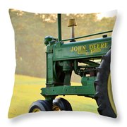 Resting Throw Pillow by JD Grimes