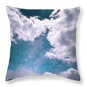 Sacred Belukha Throw Pillow