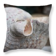 Shell Time Throw Pillow