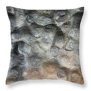 Softstone Throw Pillow
