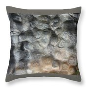 Softstone Throw Pillow