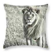 The King Stands Tall Throw Pillow