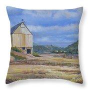 Trinidad Barn Colorado Throw Pillow