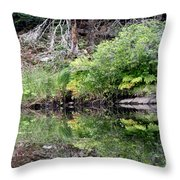 Water Like A Mirror Throw Pillow