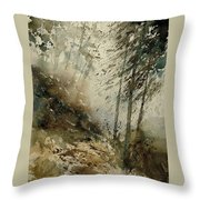 Watercolor  271005 Throw Pillow