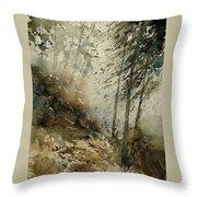 Watercolor  271005 Throw Pillow