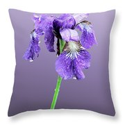 Wet Russian Iris Throw Pillow