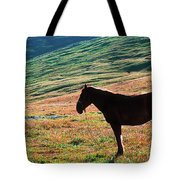 Altay Tote Bag