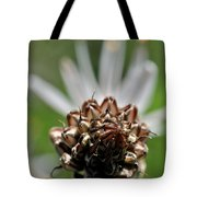 at Lachish 1 Tote Bag