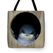 Barn Swallow Chick Tote Bag by DigiArt Diaries by Vicky B Fuller