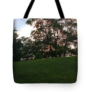 Beautiful Day In The Park Tote Bag