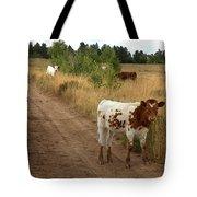 Colorado Calf Tote Bag