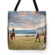 Curious Horses Tote Bag