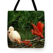 Flamingo And Scarlet Ibis Tote Bag