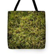 Green Square Tote Bag