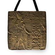 Hieroglyph At Edfu Tote Bag by Darcy Michaelchuk