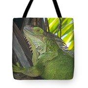 Iguana Puerto Rico Tote Bag