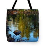 Morning Reflections On Chad Lake Tote Bag
