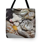 She Sells Seashells Tote Bag