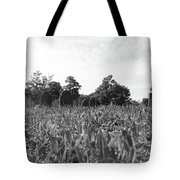 Sprouting Stones Tote Bag