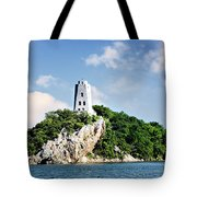 Tucker Tower 2 Tote Bag by Lana Trussell