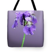 Wet Russian Iris Tote Bag