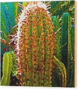 Backlit Cactus Wood Print