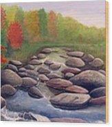 Cherokee Park Wood Print