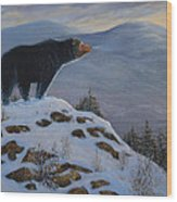 Last Look Black Bear Wood Print