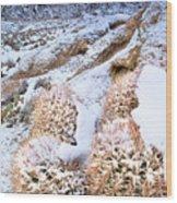 Snow Covered Cactus Below Mount Whitney Eastern Sierras Wood Print