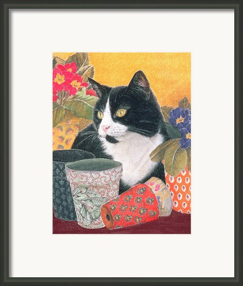 Bhajii And Flowerpots Framed Print By Judy Joel