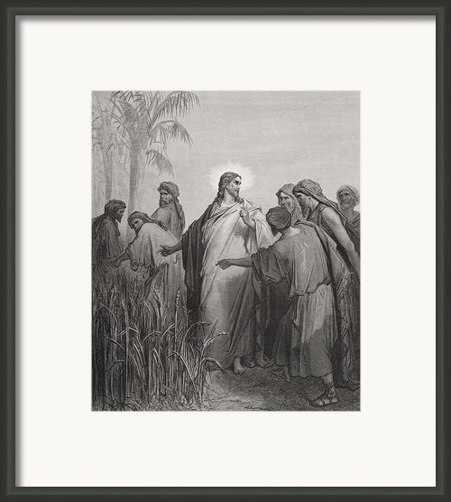 Jesus And His Disciples In The Corn Field Framed Print By Gustave Dore