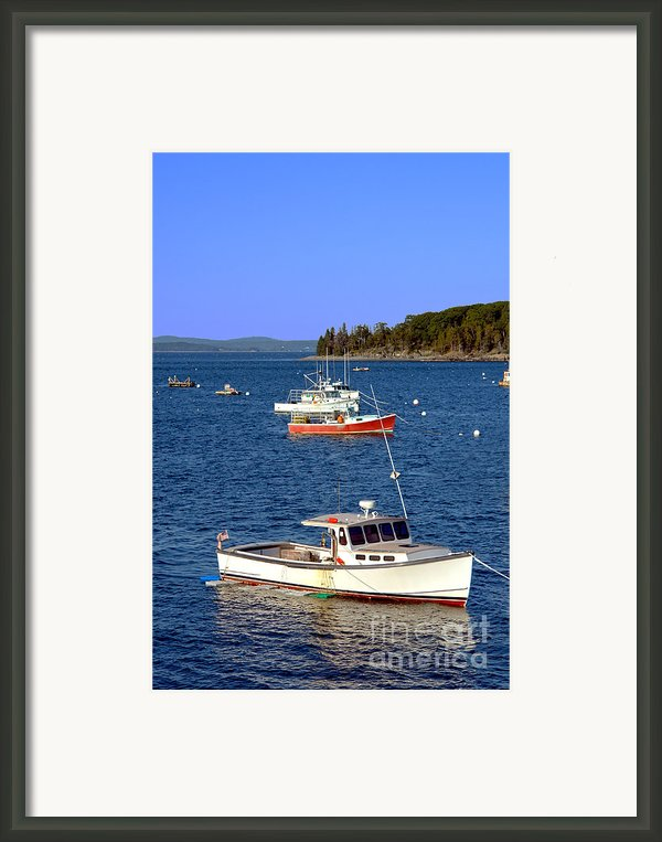 Maine Lobster Boat Framed Print By Olivier Le Queinec
