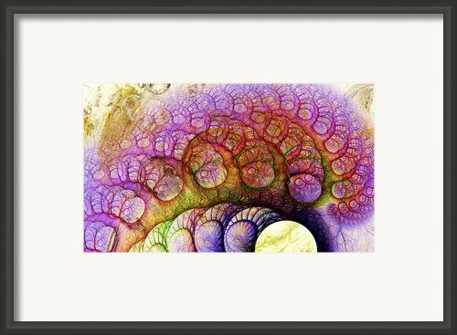 Right Hemisphere Framed Print By Anastasiya Malakhova
