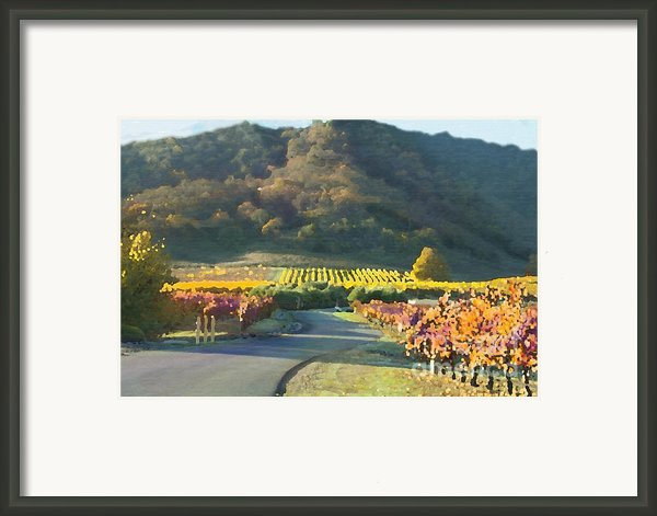 The Hills Of Clos La Chance Winery Framed Print By Artist And Photographer Laura Wrede