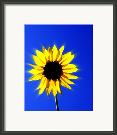 083 Framed Print By Marty Koch