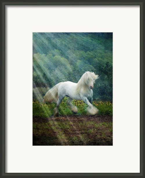 Billy Rays Framed Print By Fran J Scott
