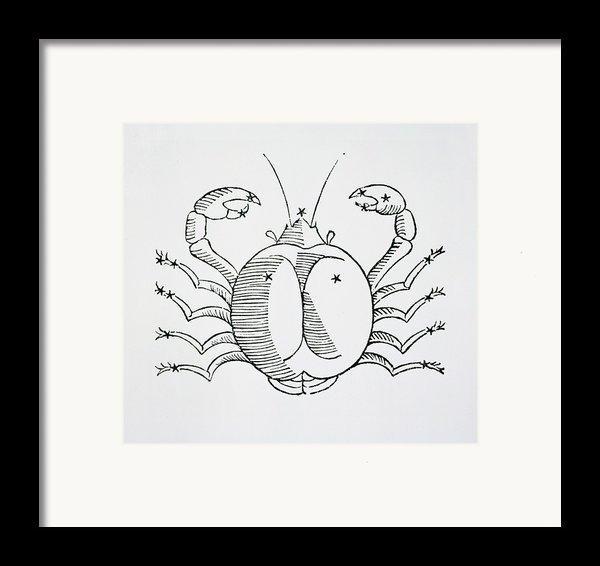 Cancer An Illustration Framed Print By Italian School