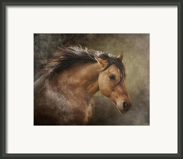 Chase The Wind Framed Print By Ron  Mcginnis