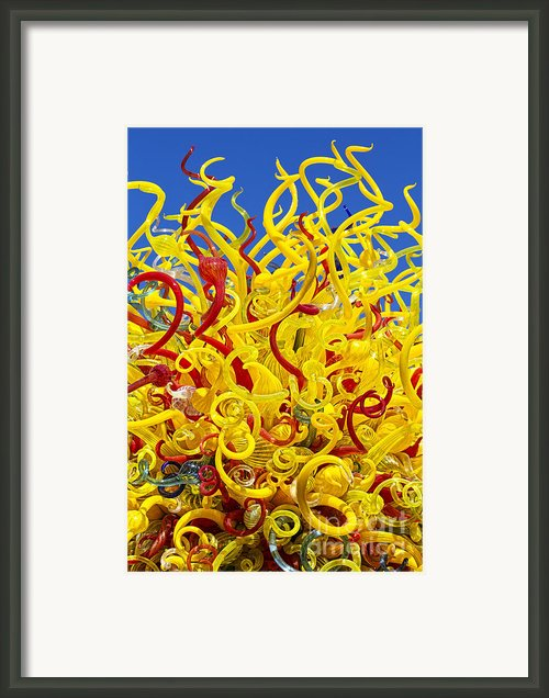 Chihuly Glass Framed Print By Elena Nosyreva