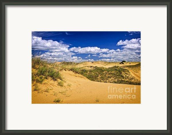 Desert Landscape In Manitoba Framed Print By Elena Elisseeva