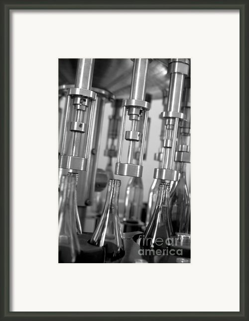 Filling Wine Bottles Framed Print By Kevin Miller