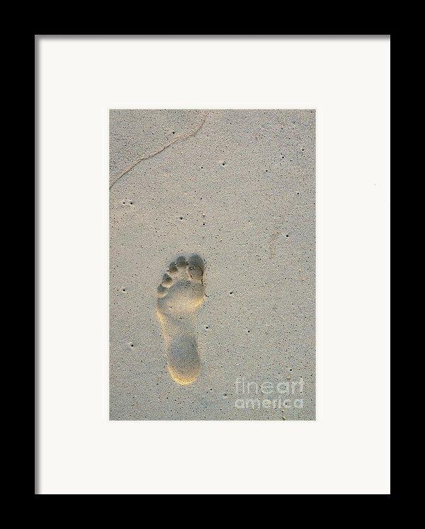 Footprint In Sand On Beach Framed Print By Sami Sarkis