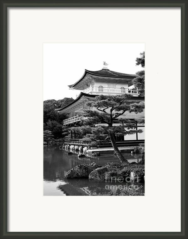 Golden Pagoda In Kyoto Japan Framed Print By David Smith